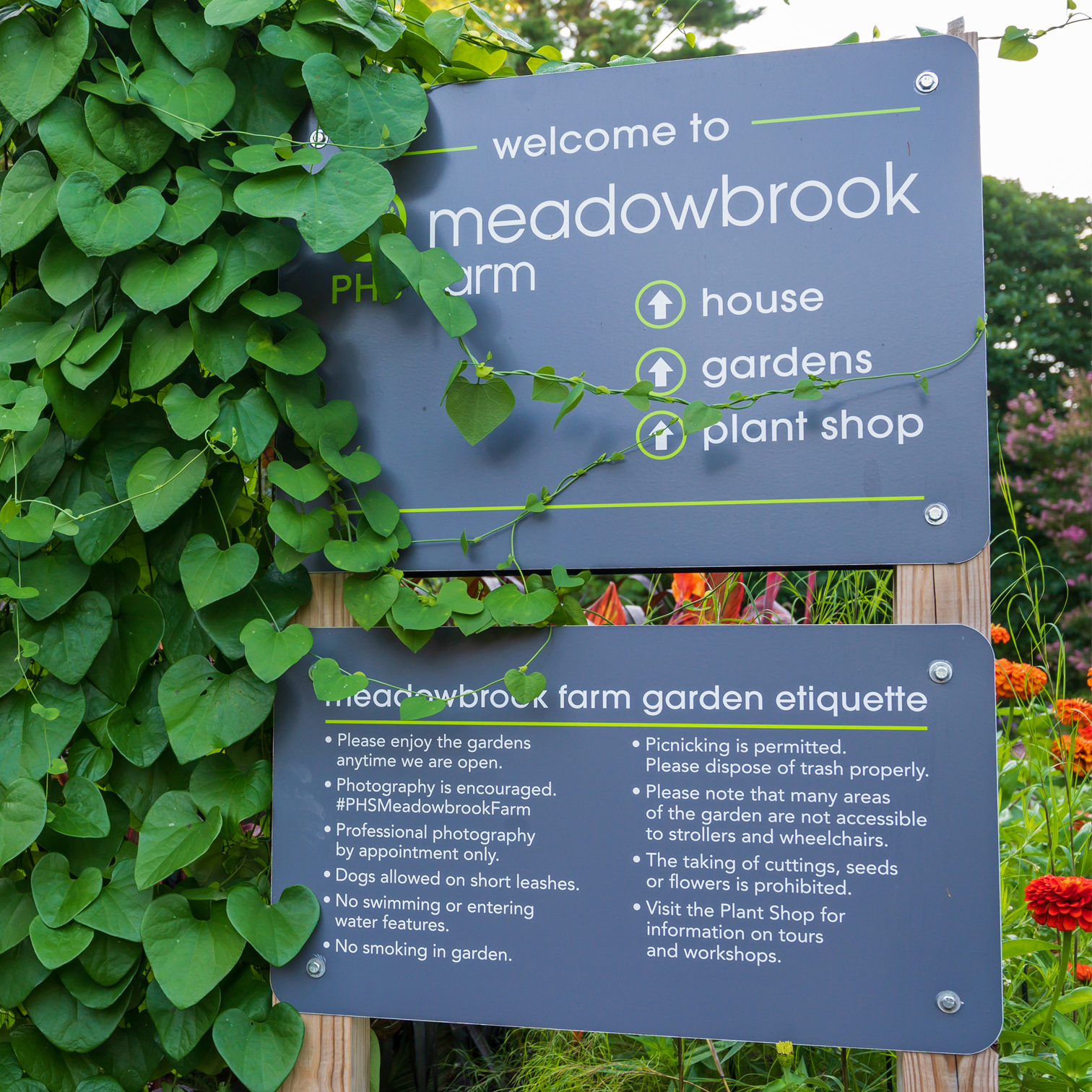 A selection of outdoor signs designed for PHS Meadowbrook Farm.